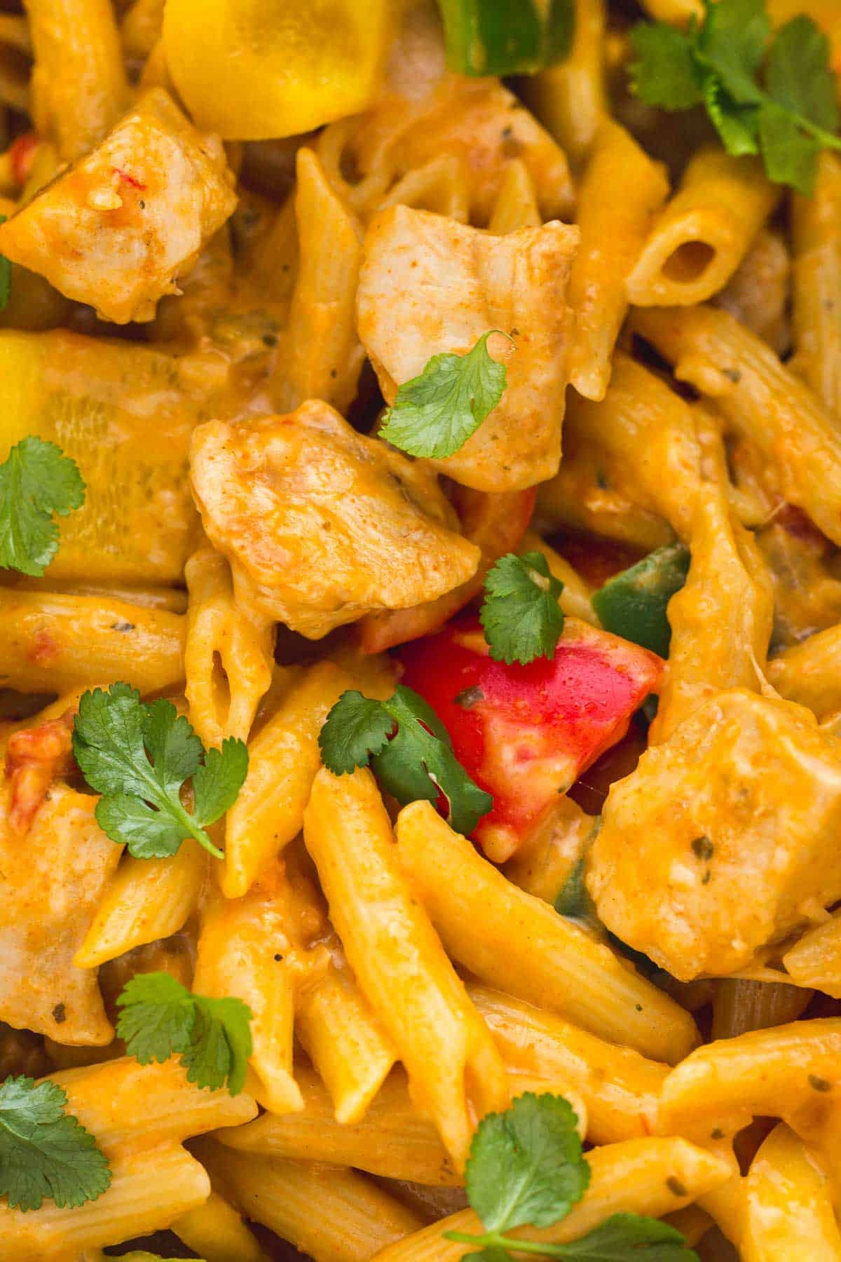 Close up shot of fajita pasta