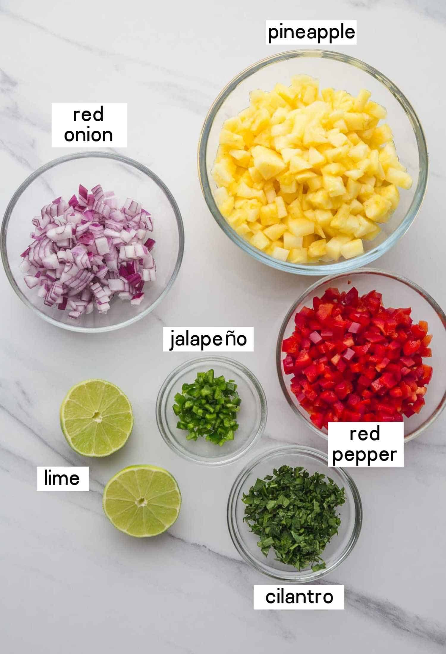 Ingredients needed to make this recipe: pineapple, red onion, red pepper, jalapeño, cilantro and limes.